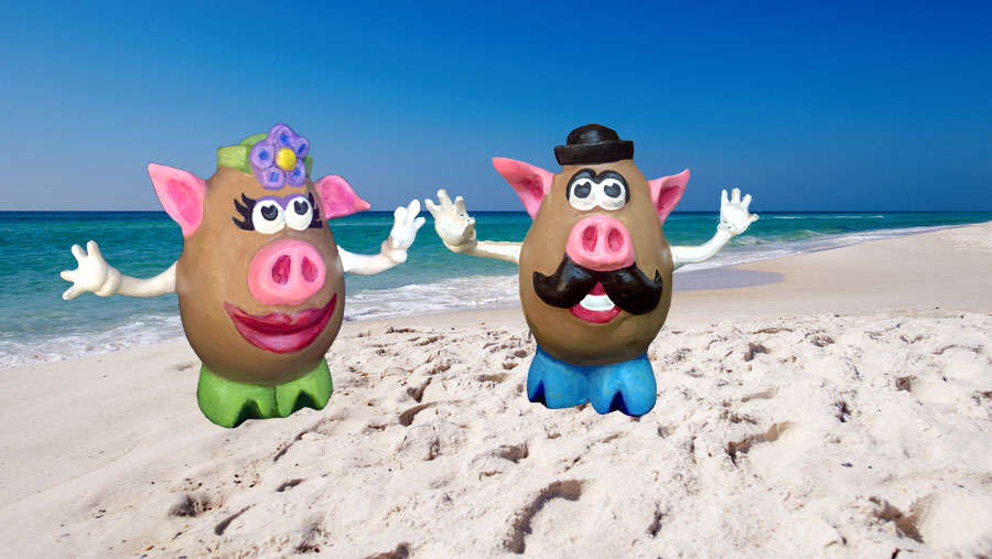Mr. and Mrs. Pigtato Head at the Beach