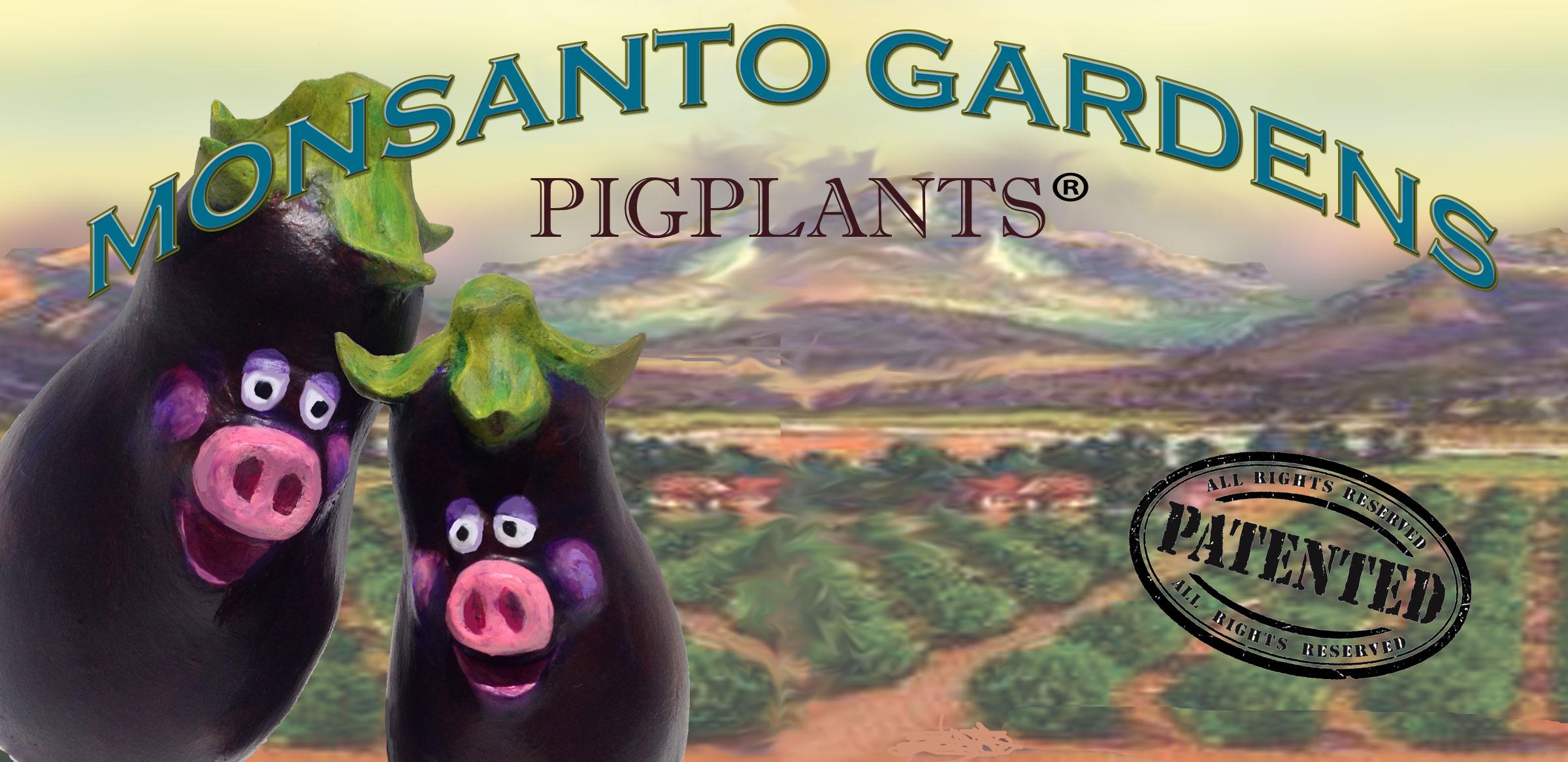 pigplantLabel